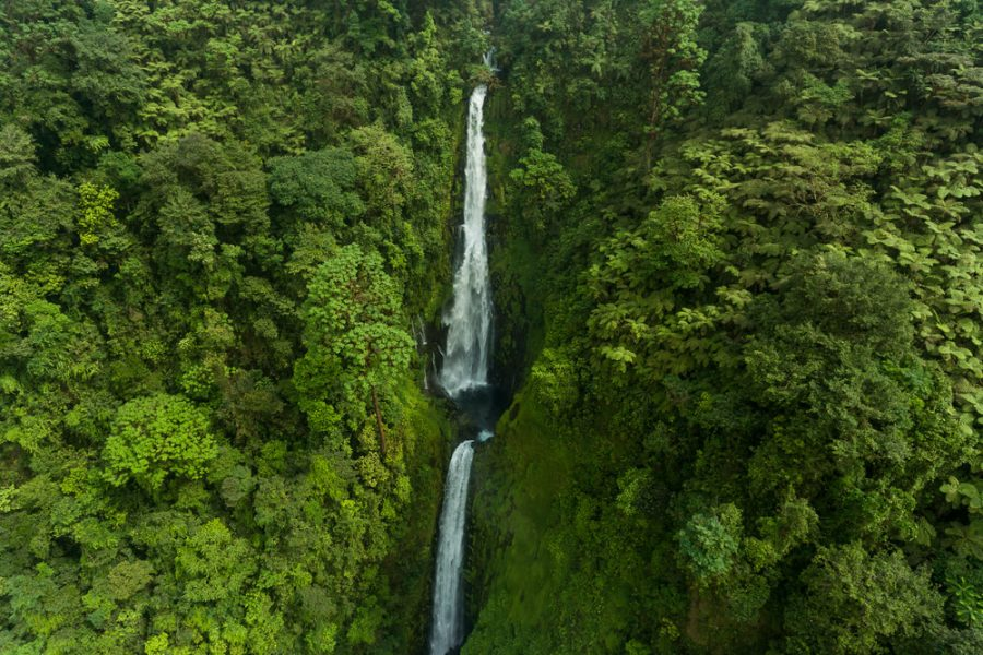 parques Guinea Ecuatorial, Los mejores parques naturales en Guinea Ecuatorial